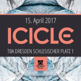 15.04.17 <br> ICICLE