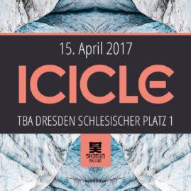 15.04.17  ICICLE