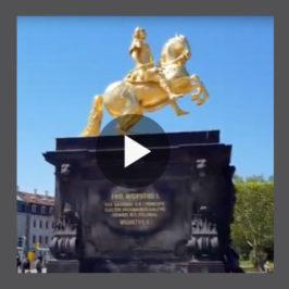 Black Barrel in Dresden. Walking debut in Germany.